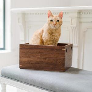 Organizational_Box